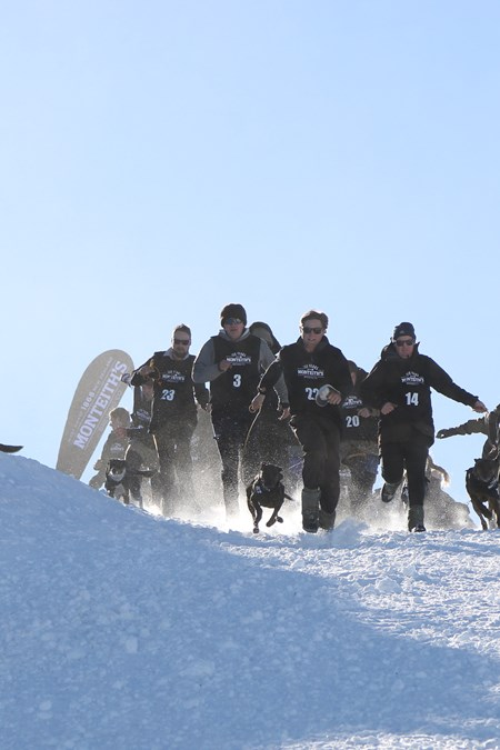 Cardrona-Queenstown Winter Festival- Dog Derby-Ski Queenstown